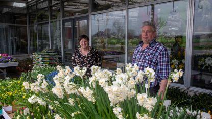 Bloemen Temmerman levert aan huis voor een fleurige lockdown