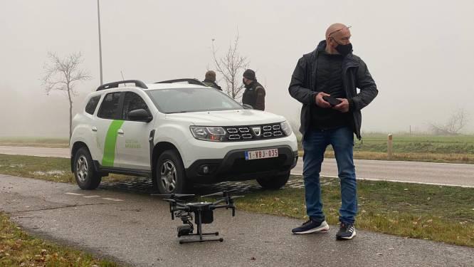 Opnieuw wolf aangereden, politie zoekt met drone naar gewond dier in Oudsbergen