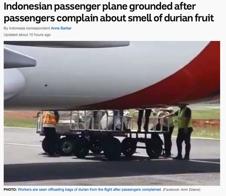 De vrucht durian is verboden in hotels in vliegtuigen. Beeld RV