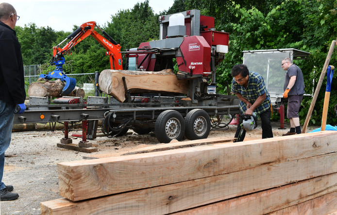 Vrijwilligers Ambika Autar, Rob Kranenburg en Wiljan Lever helpen mee bij het verzagen van de bomen tot planken. Hiervan worden de komende maanden banken en stoelen gemaakt voor de Beweegroute in de wijk Monnikenhof.