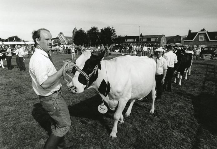 Bert Poot met een van zijn koeien tijdens de Fokveedag in 1990.