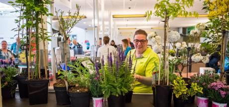 Vraag naar tuinplanten stijgt naar recordhoogte: 'Meest idiote voorjaar ooit'