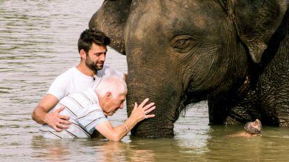 Vital (82) overwint z'n watervrees met hulp van olifant