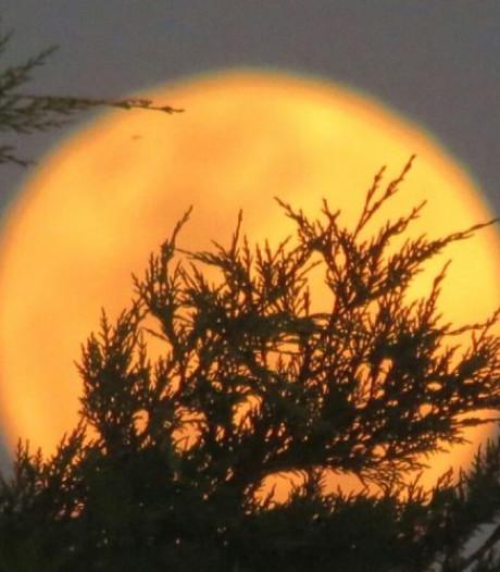De maan zorgt voor driedubbel spektakel