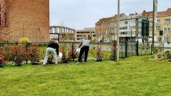"""Gedetineerden onderhouden tuin Hof van Egmont: """"Belangrijke stap in hun re-integratie"""""""