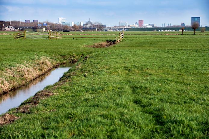 De polder Rijnenburg ten zuidwesten van Utrecht, waar over enkele jaren mogelijk windturbines en zonnepanelen staan.