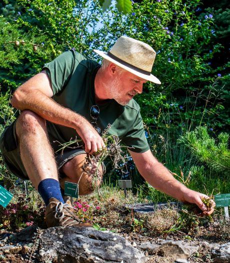Hoe red je de tuin tijdens een hittegolf? Nou, niet door je gazon te sproeien
