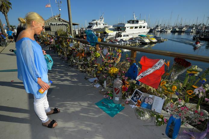 Bloemen in de haven van Santa Barbara.