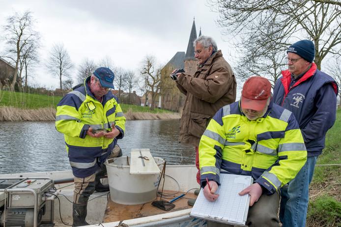 Vlnr: Gerard de Laak, Maarten Otte, Gerrit Eck en Rudy Vercruysse.