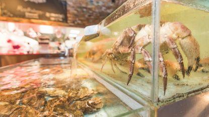 """Restaurant onder vuur wegens omstreden grijpmachine: """"Grijp een krab en laat hem gratis bereiden"""""""