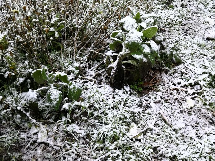 De sneeuw blijft meteen liggen.