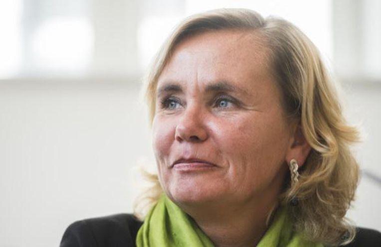 Vlaams minister van Gelijke kansen Liesbeth Homans (N-VA).