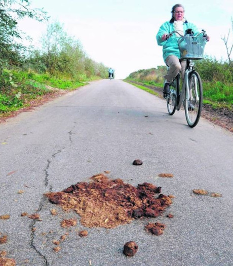 'Nog heel veel paardenpoep op de Veerse wegen'