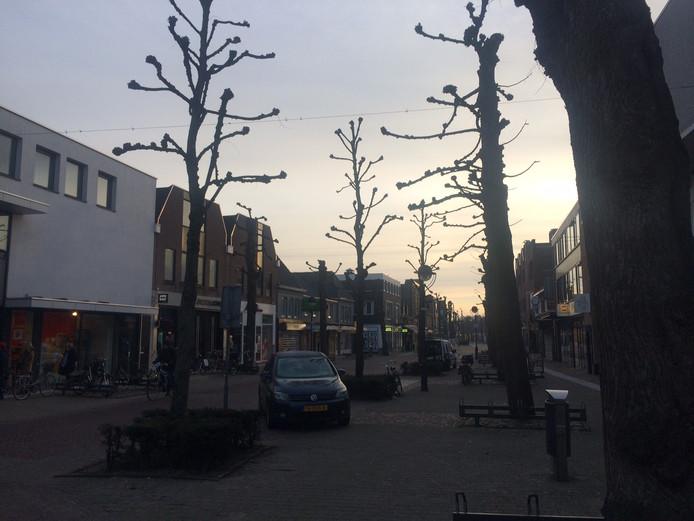 Ook in de Marktstraat, die dit jaar op de schop gaat, staan tientallen lindebomen.