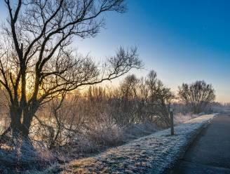 Combinatie vorst en winterzon zorgt voor mooie taferelen