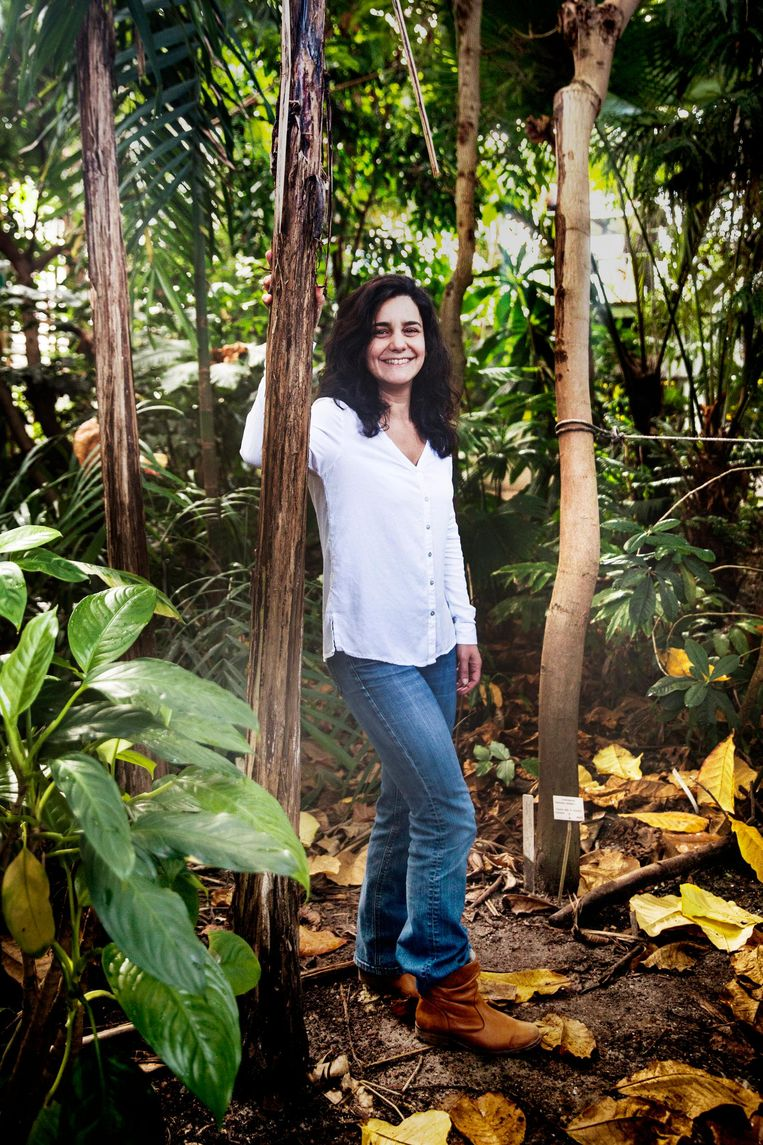Sylvia Mota de Oliveira: 'Het is belangrijk om de biologische processen in een van de laatste stukken ongerepte stukken vegetatie op aarde te begrijpen.' Beeld Aurélie Geurts