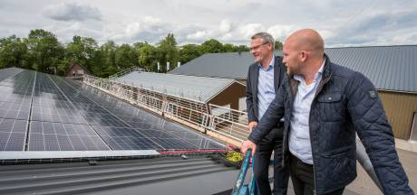 Aangeboden: gemeentelijk zonneparkje (met vergunning) in Ermelo