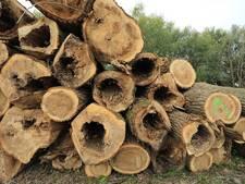 Strijd tegen biomassa laait weer op