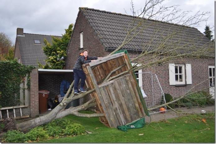 Ook de boomhut van Teun van de Ven uit Diessen moest eraan geloven tijdens de storm van 28 oktober 2013.