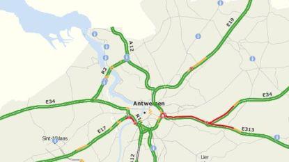 Ochtendspits rond Antwerpen om zeep: twee uur aanschuiven door ongeval