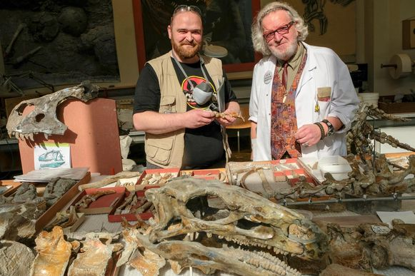 Aldo Impens en Victor Calle puzzelen het skelet in elkaar.