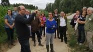 Wateroplossing voor de Laakvallei : minister Demir investeert 18.500 euro in rietkragen