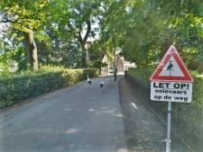 'Let op, ooievaars op de weg!' waarschuwen gloednieuwe verkeersborden in Herwijnen