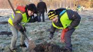 Leerlingen planten boompjes voor stadsbos van 4 hectare