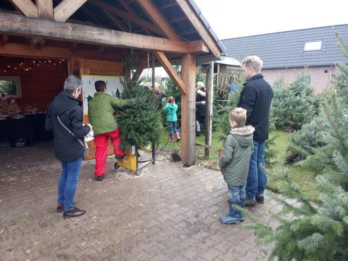 Een boom krijgt een gat voor de standaard bij Walraven in Alverna.