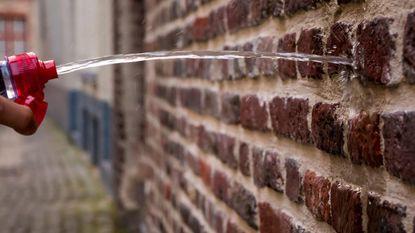 Brugge krijgt mogelijk meer 'plasmuren'