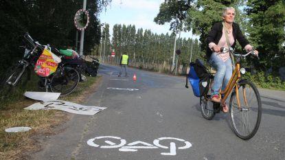 Genoeg getalmd, Gents MilieuFront en Fietsersbond schilderen zélf fietspaden