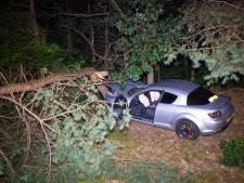 File op A28 bij Harderwijk na eenzijdig ongeval: auto velt boom, bestuurder ernstig gewond