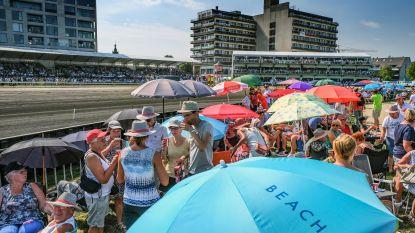 Tropische Waregem Koerse: paraplu's tegen  de… zon op strand aan tent Willy Naessens