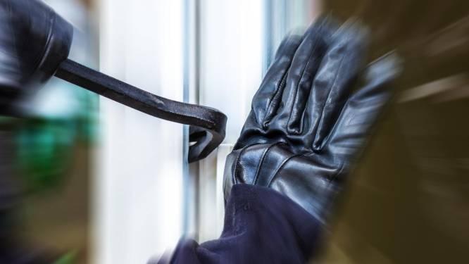 Inbrekers stelen juwelen bij inbraak in wijk