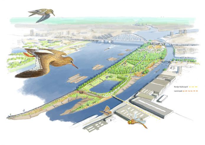 Impressie van het nieuwe getijdenpark aan de zuidkant van het Eiland van Brienenoord. Aan de westkant groeit dit gebied nog een flink stuk.