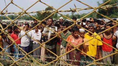 """Australische senator: """"Vang blanke boeren op, geen Rohingya-vluchtelingen"""""""