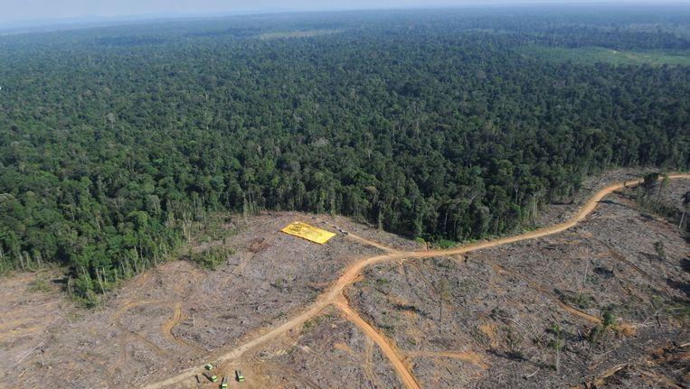 Luchtfoto van Sumatra Beeld AFP