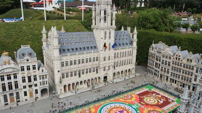Brussels bloementapijt nu al te bezichtigen, maar dan 25 keer zo klein