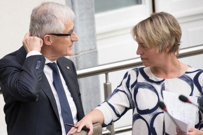 Vlaamse regering trekt veelbesproken boskaart in, Schauvliege werkt aan alternatief