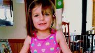 Hannah (3) sterft aan zware hoofdwonde. Ze zou door de babysit mishandeld zijn