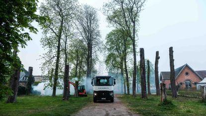 Groene toegangspoort krijgt nieuwe beplanting nadat storm lelijk huis hield