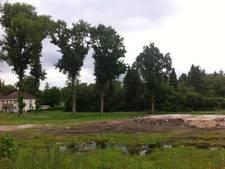 Zestig mille voor onderhoud aan bomen bij Horst in Kaatsheuvel