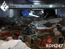 Vrachtwagenchauffeur vindt acht verstekelingen achter de tomaten