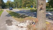 """Michiel (33) overlijdt na klap tegen boom: """"Je vrolijkheid en humor zullen me altijd bijblijven"""""""