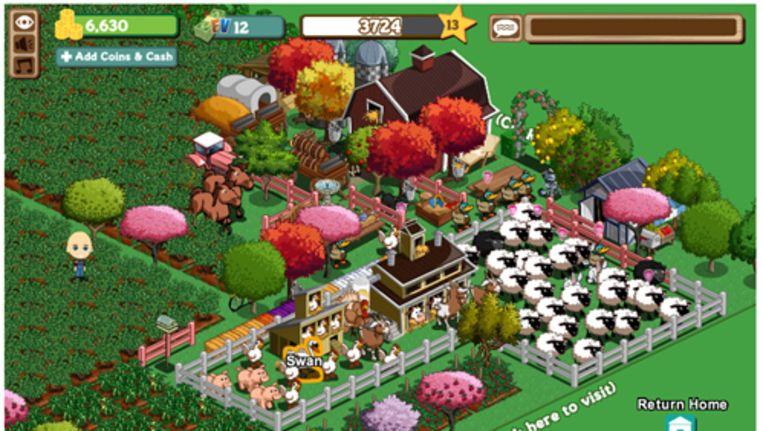 De boerderij van Emma, die onmiskenbaar het accent op het hoeden van schapen heeft gelegd. Beeld