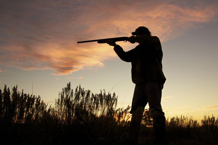 """Vogelbescherming Vlaanderen wil met een advertentie de bevolking attent maken op """"het omvangrijke gesjoemel met jachtplannen in Vlaanderen"""". Dat vinden de jagers intimidatie."""
