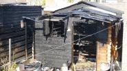 Tuinhuis gaat volledig in vlammen op