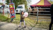 Eindelijk weer circus in de stad: vrijkaarten te winnen voor show in Mariakerke