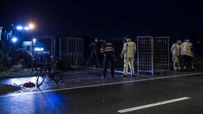 E-biker sterft na vreemde botsing tegen preikooi