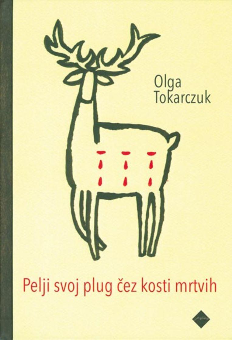 De Sloveense cover Beeld